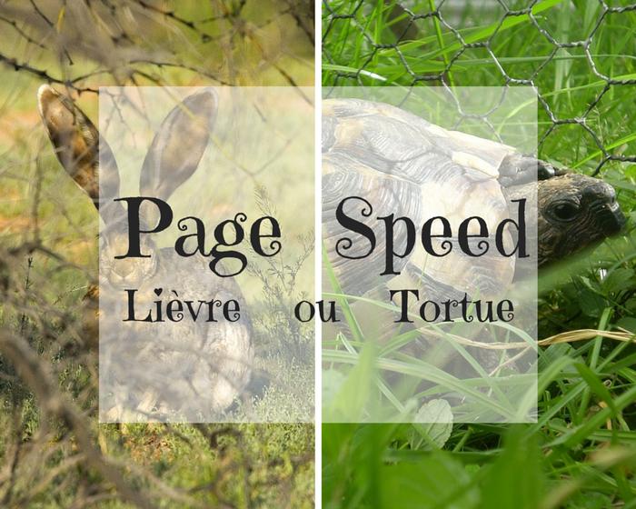 page_speed-vitesse de chargement de votre site